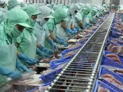 Xuất khẩu thủy sản tháng Năm đạt gần 500 triệu USD